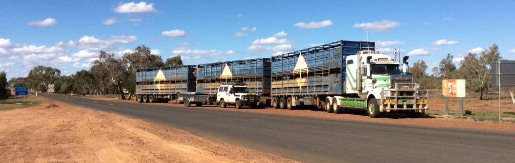 Outback Road Train